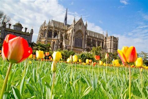 """Arundel Castle """"Tulip Festival"""", West Sussex"""