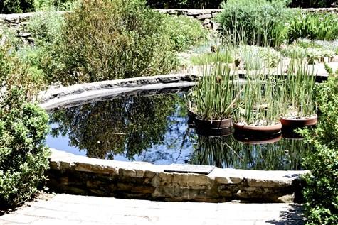 Birmingham Botanical Gardens & The Back To Backs