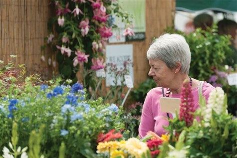 Blenheim Flower Show.