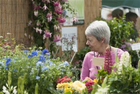 Blenheim Palace Flower Show, Oxfordshire