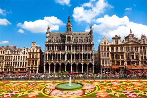 A view of the stunning, colorful carpet of flowers in Brussels.