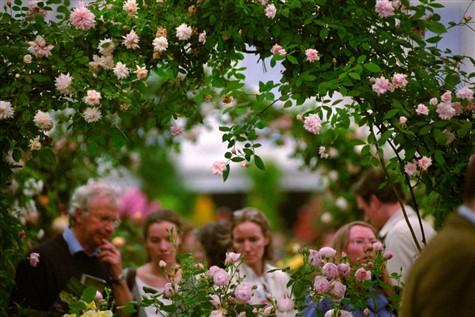 Chelsea Flower Show Short Break