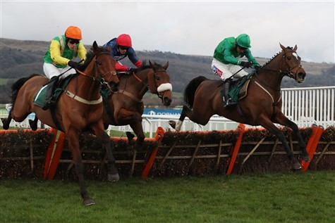 Behind The Scenes at Cheltenham Racecourse