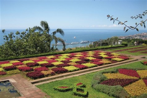 Floral Funchal & The Canary Islands