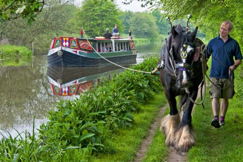 Kennet Horse Drawn Boat Cruise