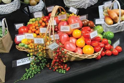 Malvern Autumn Gardening Show