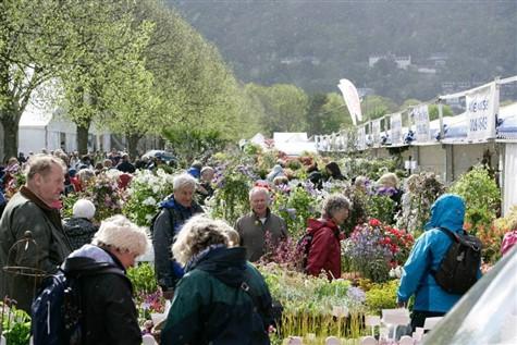 RHS Malvern Sping Gardening Show