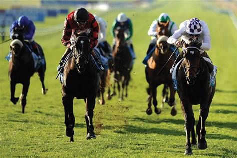 Come Racing in Newmarket - Great Break