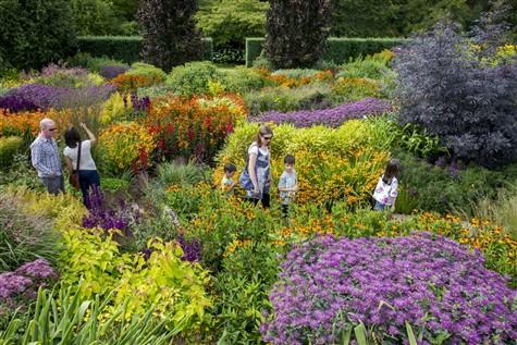 RHS Garden Rosemoor 30th Anniversary Weekend