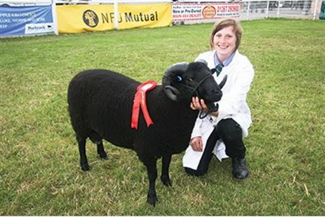 The Royal Welsh Show, Powys