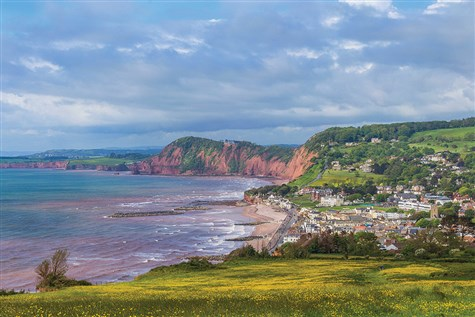 Sidmouth with Cream Tea