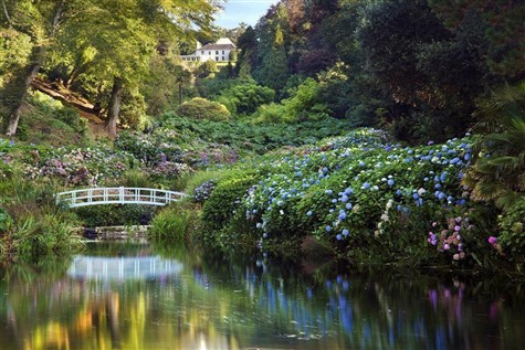 Active Traveller - Great Gardens of Cornwall Tour