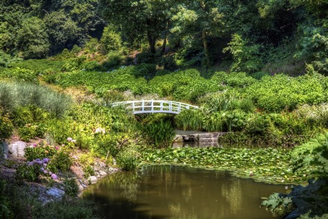Great Gardens of Cornwall