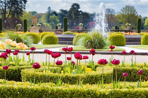 Image of Trentham Gardens