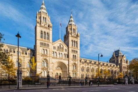 London Museums Express