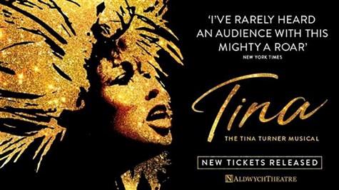 Tina Turner: The Musical