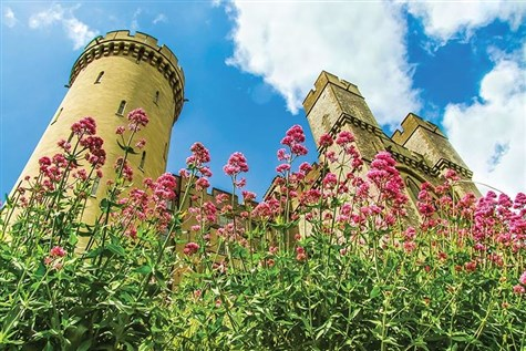 Visit Arundel Castle Tulip Festival With Whittles Coaches