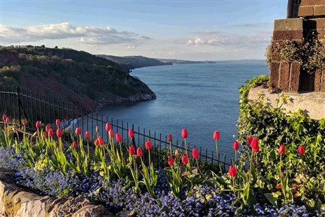 Babbacombe and the English Riviera