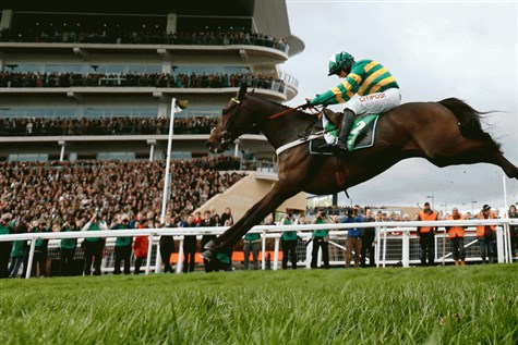 Cheltenham Festival - Ladies Day