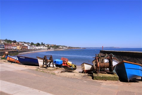 Scenic Coast Tour - Topsham, Dawlish & Teignmouth