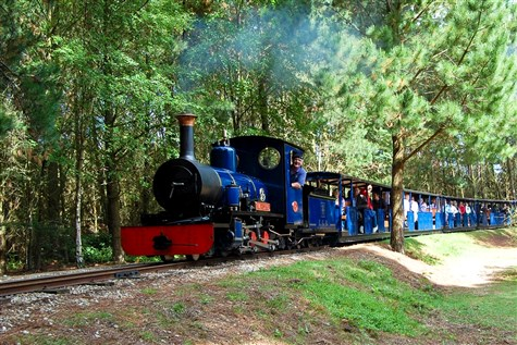 Springtime Exbury Gardens and Steam Train