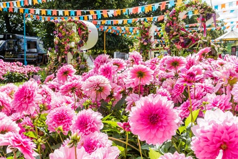 Hampton Court Palace Garden Festival