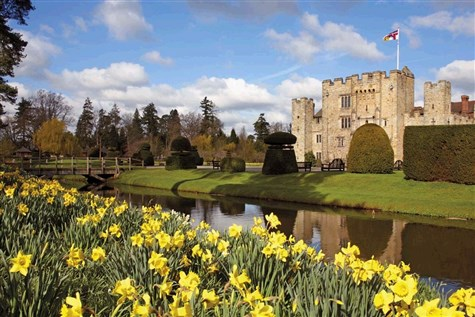Dazzling Daffodils at Hever Castle with Lunch