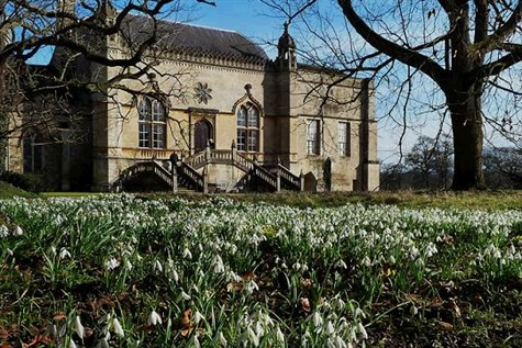 Lacock Abbey Snowdrops and the Fox Talbot Museum