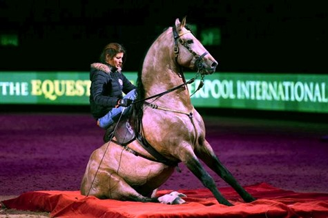 Liverpool International Horse Show