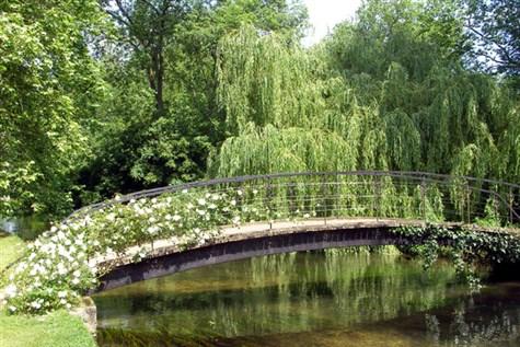 Stockbridge, the Test Valley & Montisfont Abbey