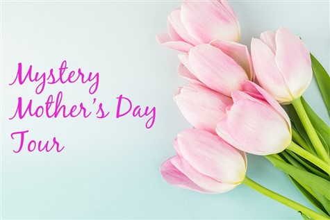 Mothers Day Mystery