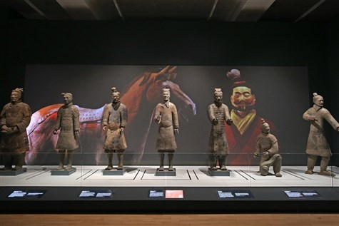 Terracotta Warriors or Liveprool Express