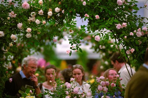 Chelsea Flower Show Short Break