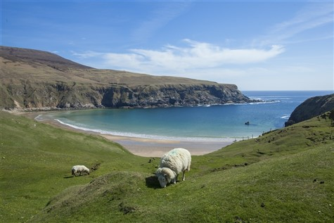 Ireland's Grand Tour - The Wild Atlantic Way