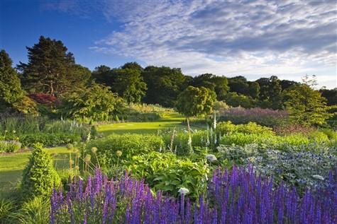 RHS Harlow Carr Flower Show, Harrogate