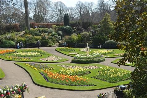 Shrewsbury Flower Show, Shropshire