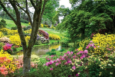 Leonardslee Lakes and Gardens in Spring