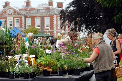 Garden, Parks & Flower Shows